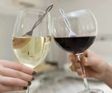 The Wand - Hangover-Preventing Wine Filter