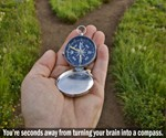 North Paw Human Compass Trainer