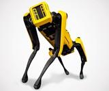 Boston Dynamics Spot Robot Dog