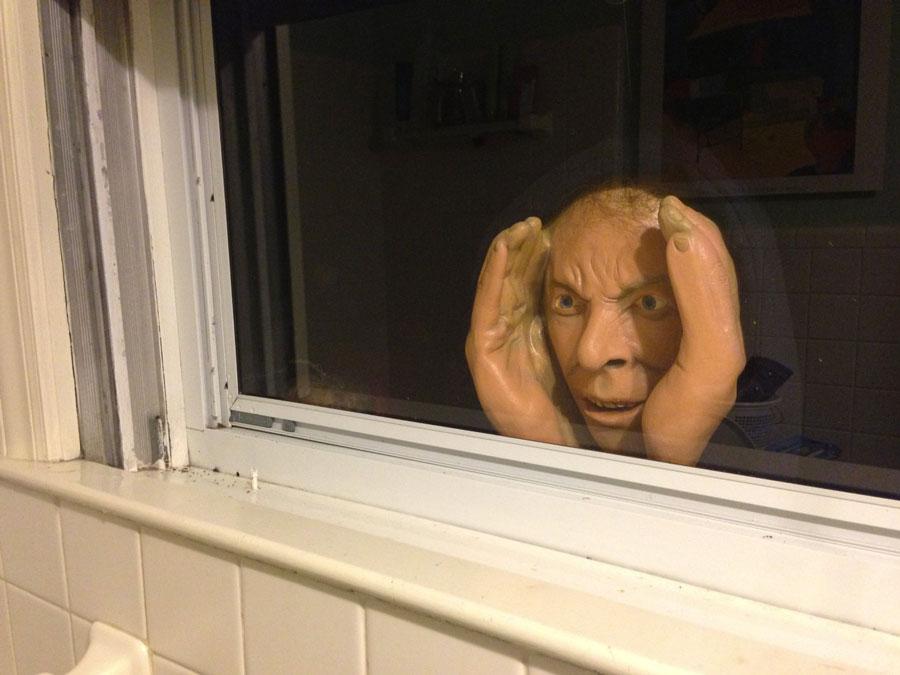 Window spy