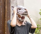 Game of Thrones 3D Masks & Wall Mounts