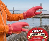 Giant Lobster Hand Claws