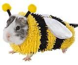 Guinea Pig Halloween Costumes