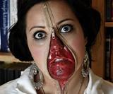 Unzipped Flesh Kit