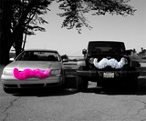Pink & Gray Carstaches