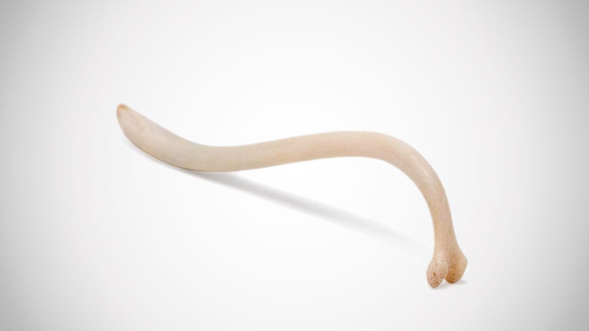 Texas Toothpick