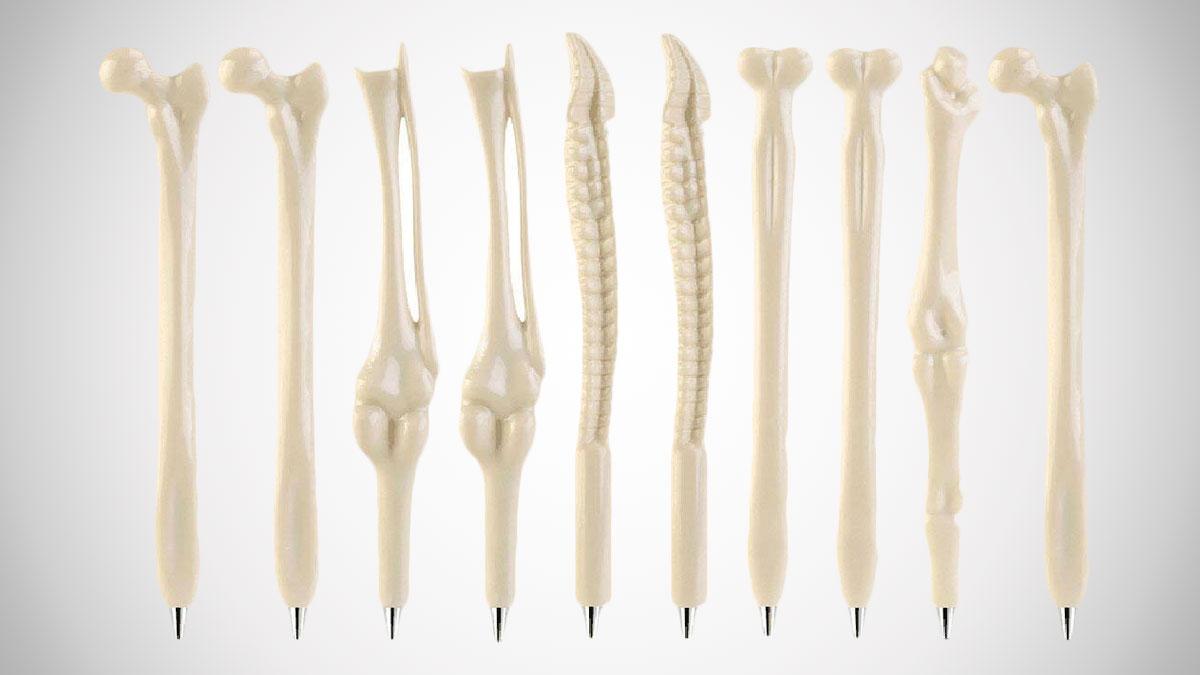 Human Bones Ballpoint Pen Set