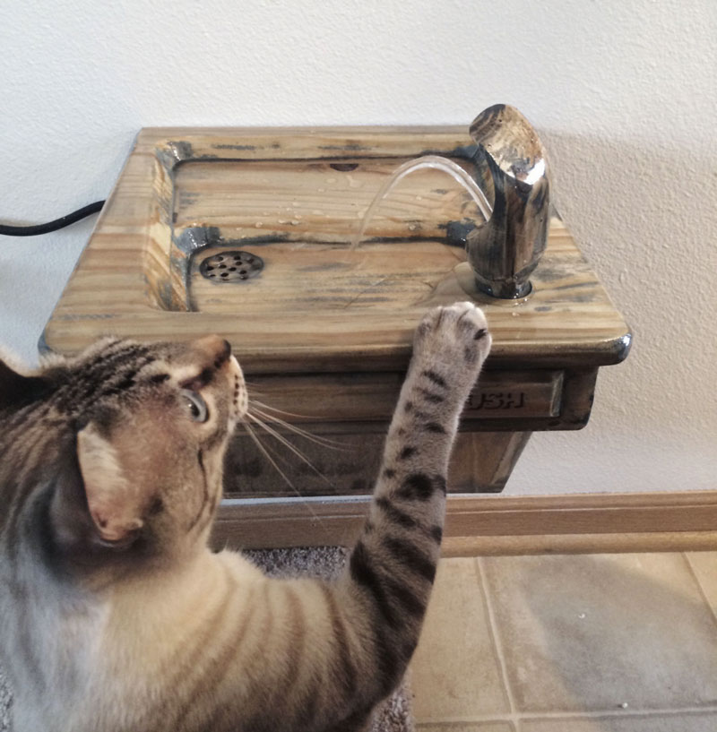 Automatic Cat Litter Box For Xxl Cat