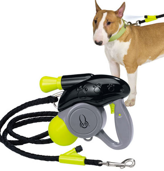 Hyperactive Puppy: Cool Down Doggie Misting Leash