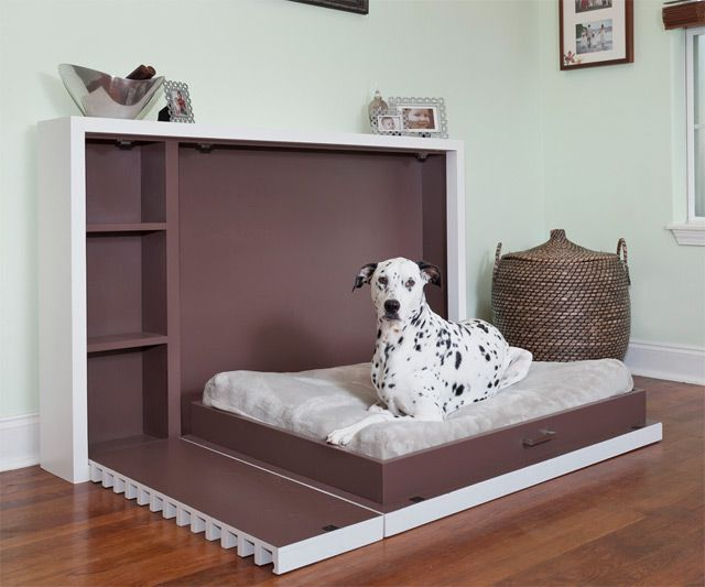 murphy bed for dogs. Black Bedroom Furniture Sets. Home Design Ideas