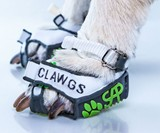 Clawgs - Paw-Wear That Allows Dogs to Use Their Claws