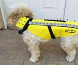 Coyote Vest Pet Body Armor