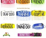 Dog & Cat Temperament Leashes & Collars