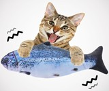 Electric Dancing Fish Cat Toy