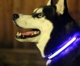 HALO LED Pet Collar