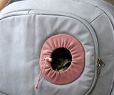 Hoonico Moomoo Bag Pet Carrier