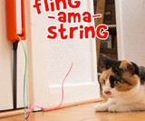 Moody Pet Fling-Ama-String