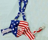 Patriotic Duck Diaper
