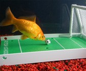 Fish Training Kit