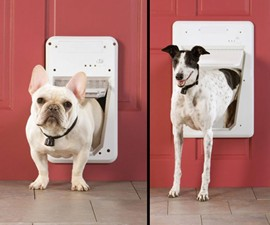 PetSafe SmartDoor
