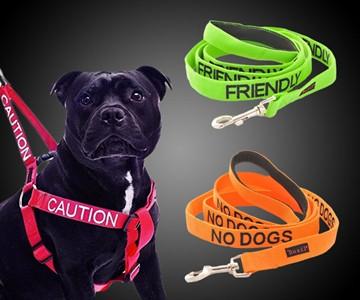 Dog & Cat Temperament Leashes & Collars