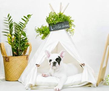 Wood Green Pet Food Bank