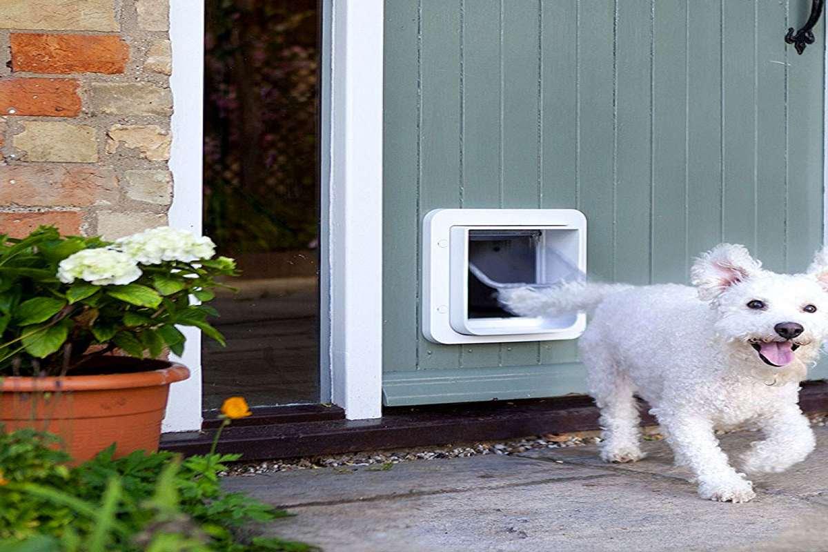 Cat Flaps Cat Doors Dog Doors Microchip Magnetic Oukasfo