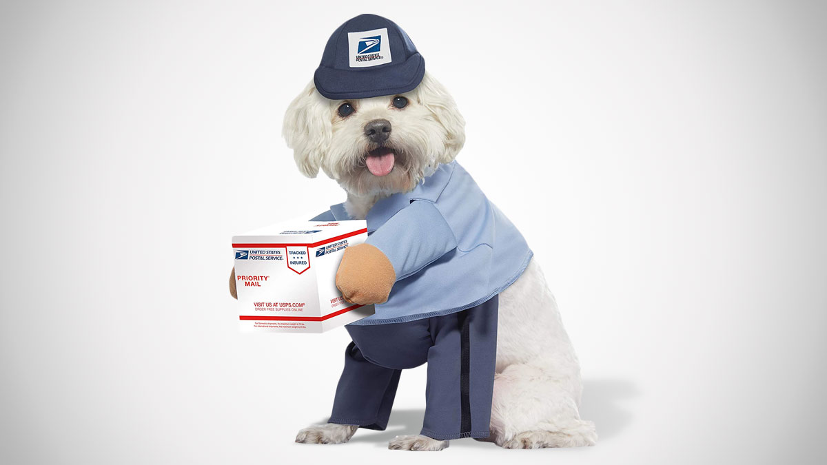 USPS Mail Carrier Dog Costume