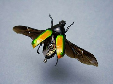 Steampunk Insects