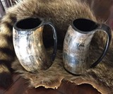 AleHorn Game of Thrones Drinking Horns