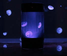 Pet Jellyfish Aquarium