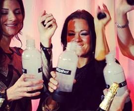 Vapshot Vaporized Alcohol System