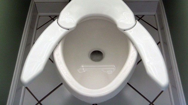 One Size Fits All Toilet Seat