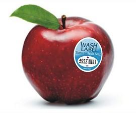 Vanishing Fruit Wash Labels