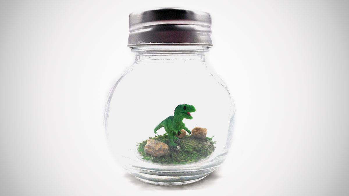 """1"""" Pet T-Rex Terrarium with Adoption Certificate"""