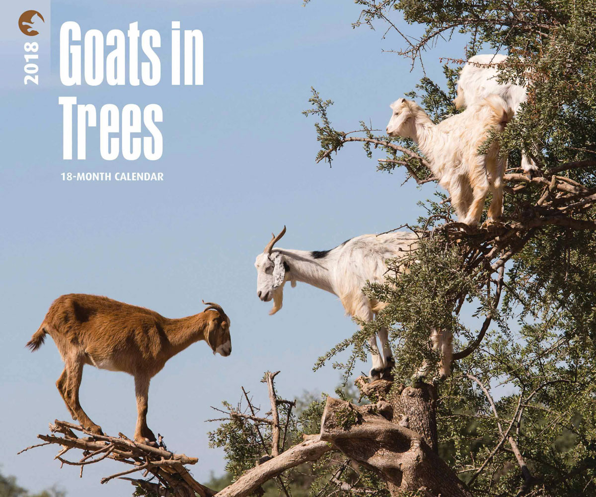 goats in trees 2018 calendar