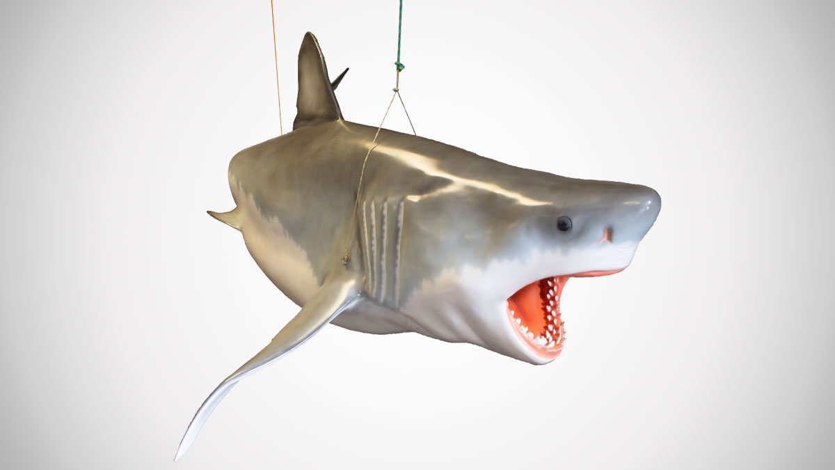 Life Size Jaws Sculpture