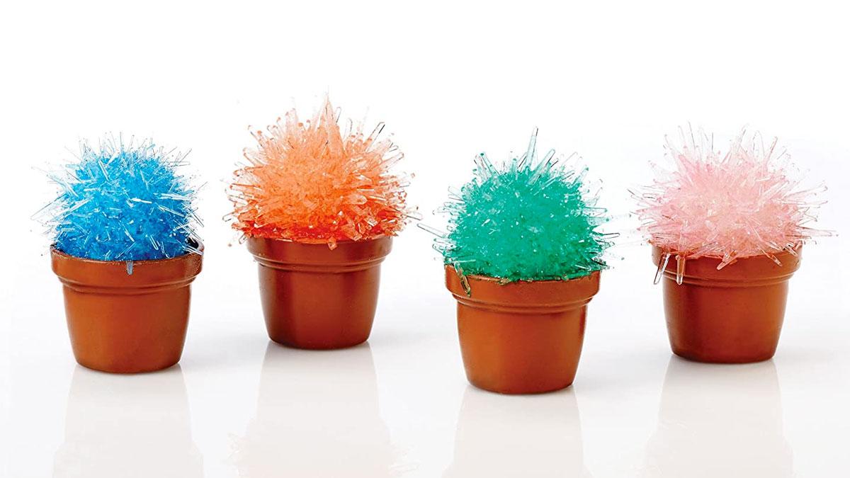 Magicactus Kit - Miniature Crystal Cactus Growing Set