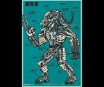 Predator Anatomy Print