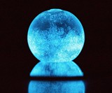 Dino Bioluminescent Plankton Sphere Dudeiwantthat Com