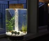 Norrom Freshwater Aquarium