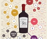 Wine Education Prints