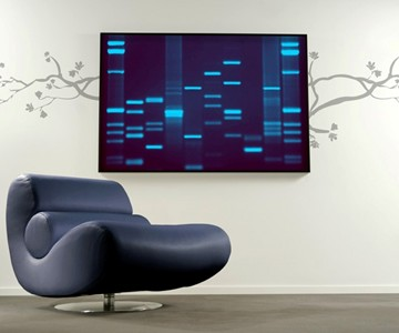 DNA Portraits Wall View