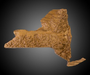 US State 3D Wood Topographic Maps