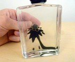 Ferrofluid Bottles