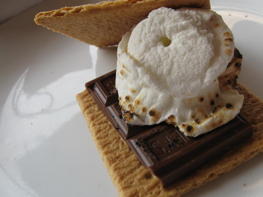 Old Fashioned S'Mores Maker | DudeIWantThat.com