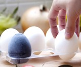 Charcoal Refrigerator Odor Eggs