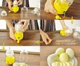 In-Shell Egg Scrambler