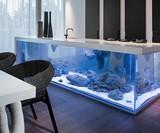 Ocean Kitchen - Aquarium Island