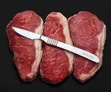 Skalpel Steak Knife